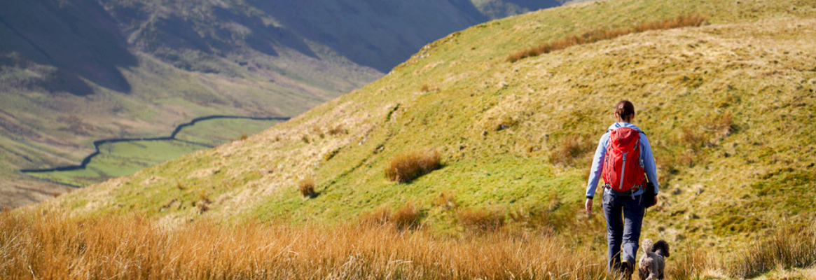 lady walking dog on lake district fell